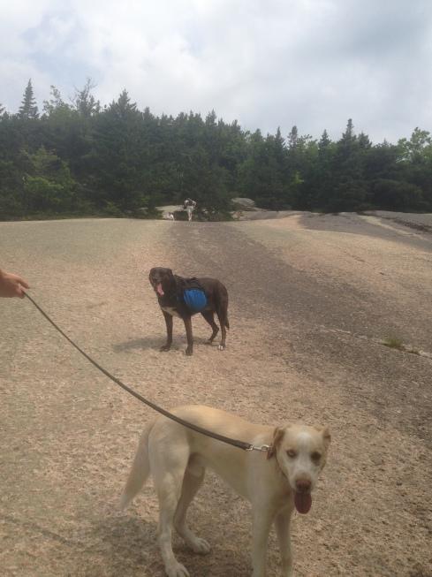 granite state hike