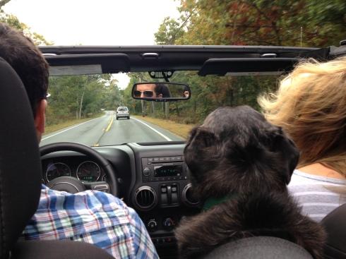 MV Jeep